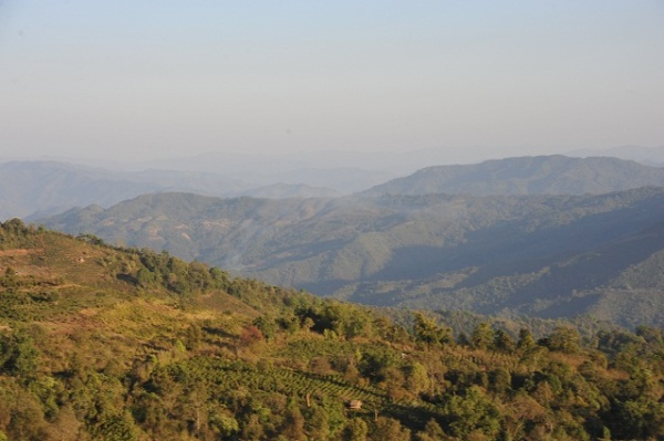 near Phongsaly