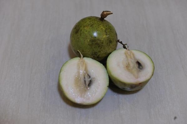 green fruit