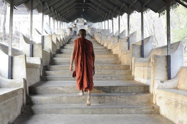 following the monk
