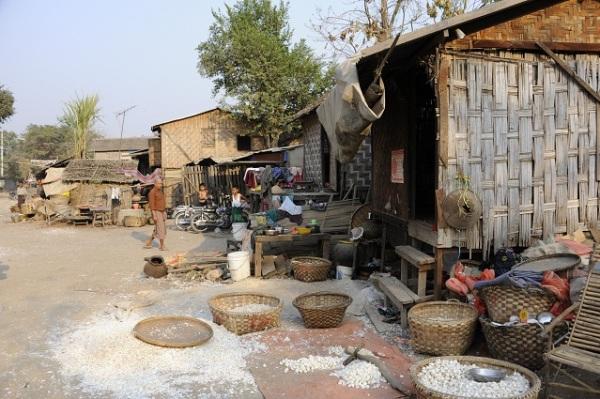 garlic village