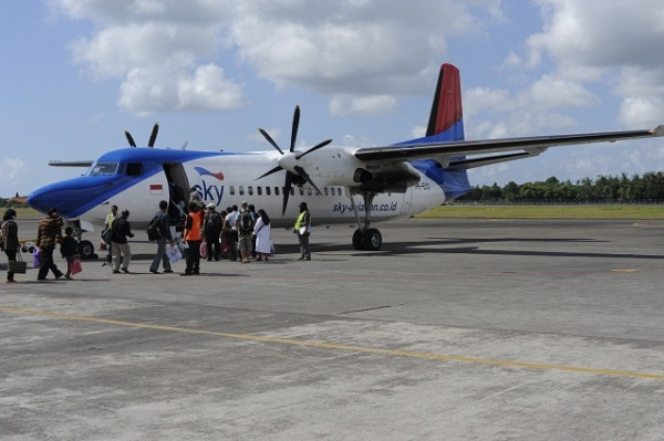 SkyAviation plane