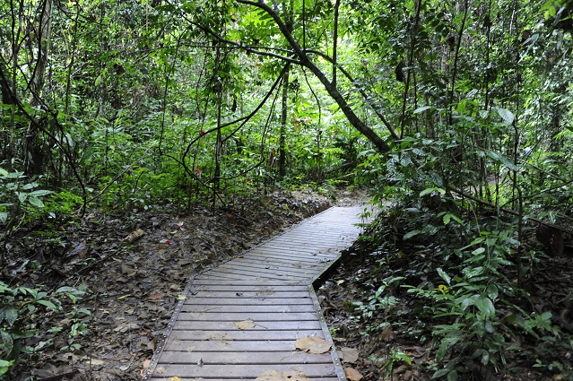 built path