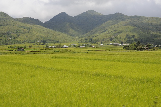 landscape going to Ruteng