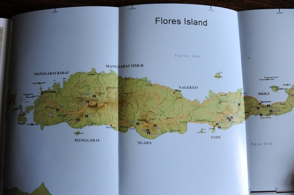 Flores map