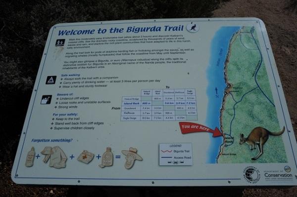 Bigurda Trail