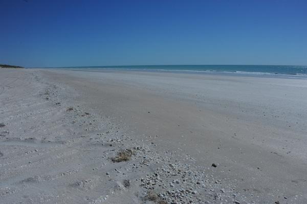 beach left side